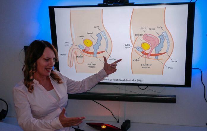 A végbélsérv -rectocele- a hátsó hüvelyfal süllyedése -gyengesége, elégtelensége, vagy sérülése következtében alakul ki. Ilyenkor a végbél kisebb-nagyobb mértékben be boltosul a hüvelybe. Ismerjük meg a tartószerkezetet. A medencefenék izmoknak […]